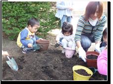 10月:球根植え 春にはどんなお花がさくでしょう