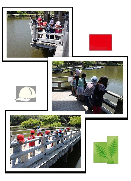 2015年4月24日(金) お散歩(年長つき組・セーラつき組)